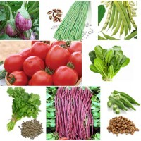 Hybrid Vegetable Seeds Combo Pack AG038