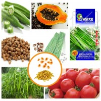 Hybrid Vegetable Seeds Combo Pack of 6 Items AG039