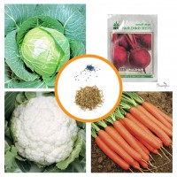 Hybrid Vegetable 	Seeds Combo Pack of 4 Items AG041
