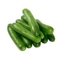 Cucumber NS 404 Hybrid Vegetable Seeds 3 Packets