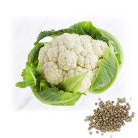Couliflower Hybrid Vegetable Seeds