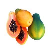 Papaya Hybrid Seeds